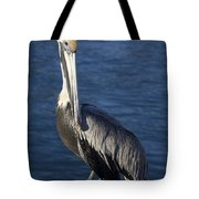Over The Shoulder Pose Tote Bag