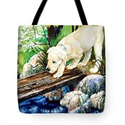 Overcoming Fear Tote Bag