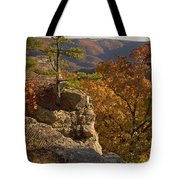 Overlook At Cecil Hollow Tote Bag