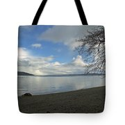 Owen Beach Tote Bag