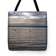 Owen Beach Tote Bag