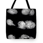 Owl Pellets Tote Bag