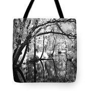 Pa. Country Stream Tote Bag