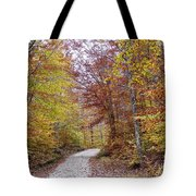 Pachaug State Forest Tote Bag