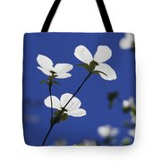 Pacific Dogwood Blossoms Cornus Tote Bag
