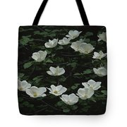 Pacific Dogwood Blossoms Tote Bag