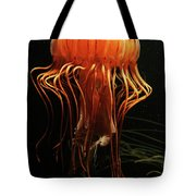 Pacific Sea Nettle Chrysaora Tote Bag