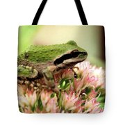 Pacific Tree Frog Tote Bag by Laurel Talabere
