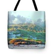 Padres Island National Park Beach Tote Bag