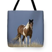 Paint Filly Before Tote Bag