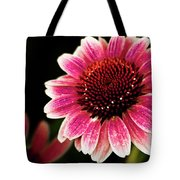 Paint The Sun Tote Bag