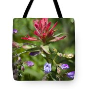 Painted-cups Of The Hillside - 2 Tote Bag