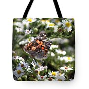 Painted Lady - Surrounded In White Tote Bag