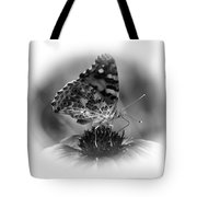 Painted Lady 1 Tote Bag