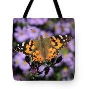 Painted Lady Among The Asters Tote Bag
