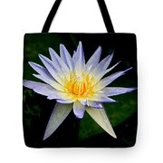Painted Lily And Pads Tote Bag