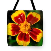 Painting With The Morning Dew Tote Bag