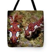 Pair Of Miamira Magnifica Nudibranch Tote Bag