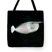 Paletail Unicornfish Tote Bag