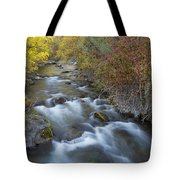 Palisades Autumn Tote Bag