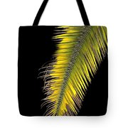 Palm Frond Against Black Tote Bag