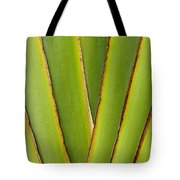Palm Frond Detail Tote Bag