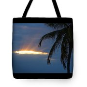 Palm Rays Tote Bag