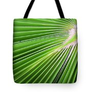 Palm Tree Frond Tote Bag
