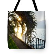 Palm Tree In Backlight Tote Bag