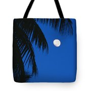 Palm Tree Silhouetted Against The Sky Tote Bag