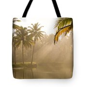 Palm Trees And Sunbeams, Kerala, India Tote Bag