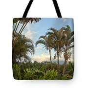 Palms In Costa Rica Tote Bag