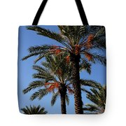 Palms9895b Tote Bag