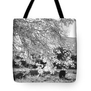 Palo Verde Blossoms Tote Bag