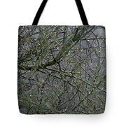 Palo Verde In The Rain Tote Bag