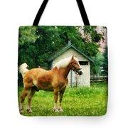Palomino In Pasture Tote Bag