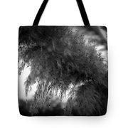 Pampas Dew Tote Bag