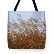 Pampas Grass In The Wind 1 Tote Bag