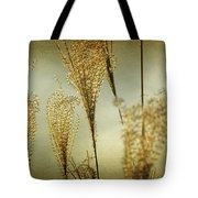 Pampas Grass Panoramic Tote Bag