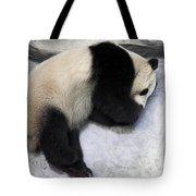 Panda Paws Tote Bag