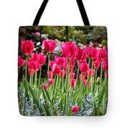 Panel Of Pink Tulips Tote Bag