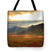Panoramic Image Of Late Afternoon Tote Bag