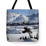 Panoramic Of An Unnamed Mountain Taken Tote Bag