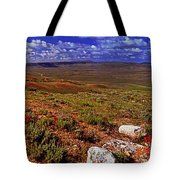 Panoramic View Of Fossil Butte Nm Valley Tote Bag