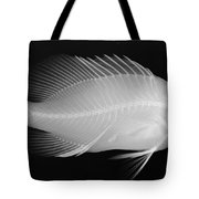 Panther Grouper X-ray Tote Bag
