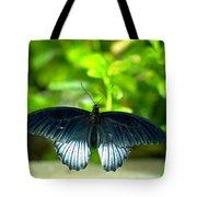Papilio Lowii II Tote Bag