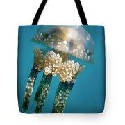 Papuan Jellyfish Mastigias Papua, Palau Tote Bag