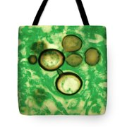 Paracoccidioides Brasiliensis Tote Bag