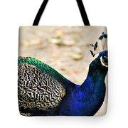 Parading Peacock Tote Bag