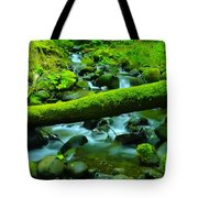 Paradise Of Mossy Logs And Slow Water   Tote Bag